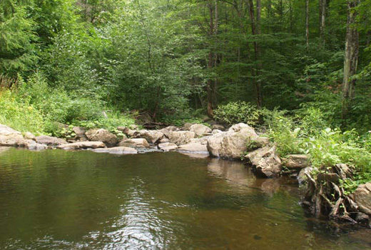 Swimming hole at Mountain River Academy of T'ai Chi Ch'uan